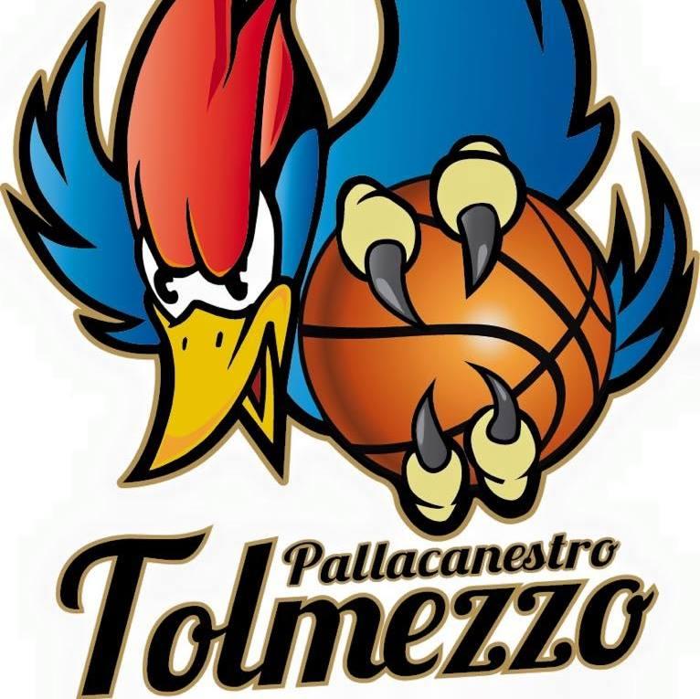 logo pallacanestro tolmezzo