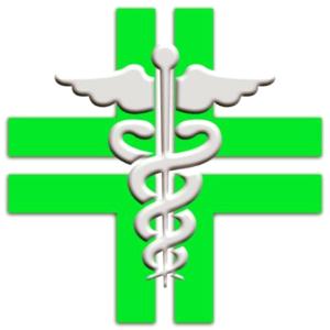 logo farmacia verzegnis